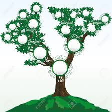 family tree with place for photos or names royalty free cliparts