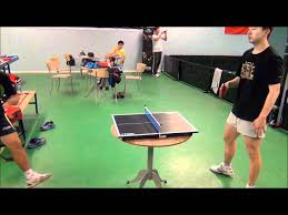 ping pong vs table tennis liu guoliang vs ma long in mini table tennis youtube