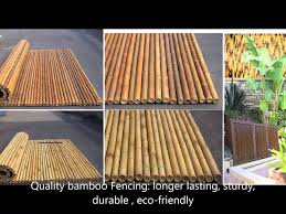 1 a split ted bamboo poles basic how to bamboo splitting cut