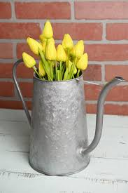 flower watering can the most beautiful flower 2017