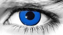 zombie theatrical contacts lens wickedeyez com wickedeyez