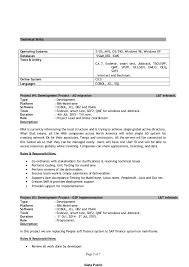 programmer resume