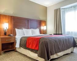 Comfort Inn Sfo San Bruno Hotel Comfort Inn U0026 Suites San Francisco Airport