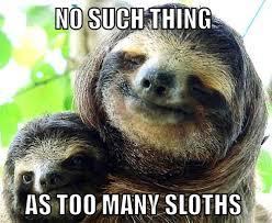 Angry Sloth Meme - dirty sloth memes dirty sloth meme sloth pinterest sloth