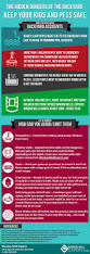 the hidden dangers of the backyard infographic backyard
