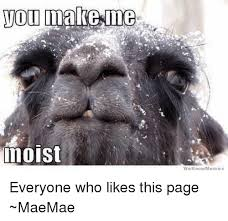 We Know Memes - 25 best memes about you make me moist you make me moist memes