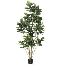 mercury row artificial foliage rubber tree in pot reviews wayfair