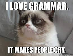 Grammar Meme - grammar practice mrs jen s site