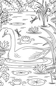 826 best coloring pages spring summer images on pinterest