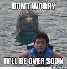 Meme Soon - don t worry it ll be over soon funny dolphin meme picture