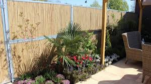 bamboo fencing things to consider at the time of buying youtube