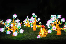 when does the lights at the toledo zoo start luminous nights 500 chinese lanterns mark the start of fall at