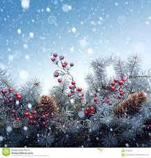christmas tree background royalty free stock images image 34786059