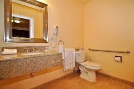 handicap bathrooms designs picture on spectacular home design