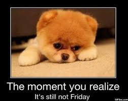 Almost Friday Meme - it s almost friday meme friday funny pictures meme and funny