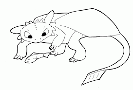 toothless dragon coloring pages high quality coloring pages