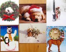 avanti press christmas animals greeting cards u0026 invitations ebay