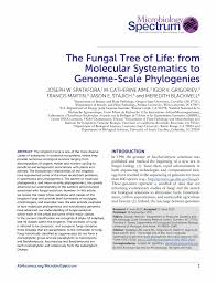 asmscience the fungal tree of life from molecular systematics