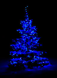Outdoor Blue Lights Snow Covered Tree With Blue Lights Reminds Me Of My Childhood In