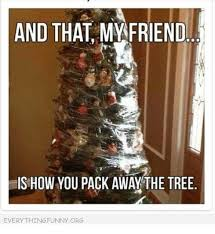 Memes And Everything Funny - and that my friend is how you pack away the tree everything funny