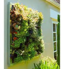 fresh and natural house with indoor wall planters