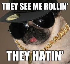 They See Me Rollin Meme - they see him rollin they hating pics ngiggles