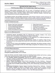 Senior Resume Template See Our Professional Executive Resume Writing Exles