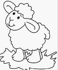 sheep coloring pages preschool coloring kids