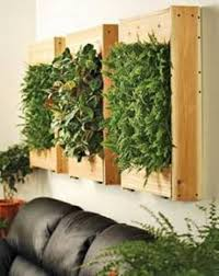 Wall Planters Indoor by Wall Planters Indoor With Timber Boxes House Wall Planters