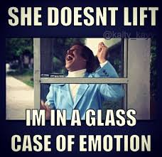 Glass Case Of Emotion Meme - fun gym related pictures page 51 myfitnesspal com