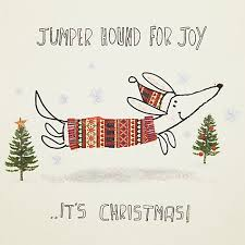 buy john lewis jumper hound charity christmas cards pack of 6