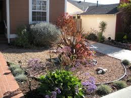 drought resistant landscape backyard u2014 home ideas collection