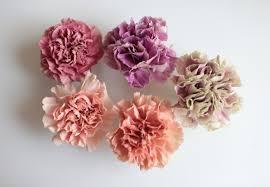 carnations flowers carnations rethinking a supermarket flower gardenista