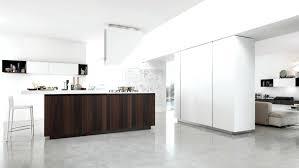 Modern Kitchen Cabinets Handles Modern Kitchen Cabinet Handles Bloomingcactusme Living