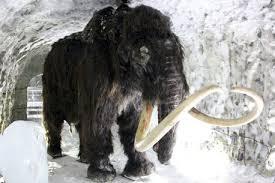17 images yakutsk winter