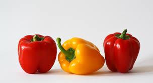 terra u0027s kitchen health journal