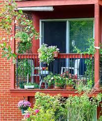 107 best garden images on pinterest gardening balcony and