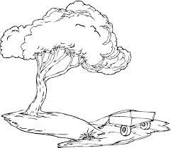 tree coloring page ngbasic com