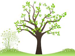 welcome to venkadath family tree