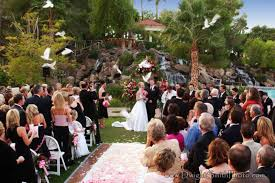 val vista lakes wedding val vista lakes in gilbert hosts pet wedding