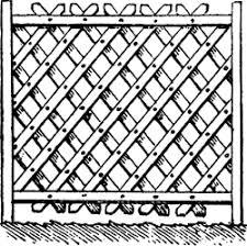 trellis quantization trellis lattice article about trellis lattice by the free dictionary