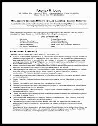 Tourism Resume Information Technology Auditor Cover Letter