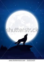 theme background wolf moon stock illustration