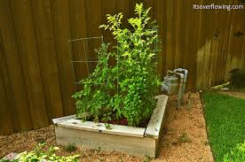 how to build and arrange a raised bed vegetable garden its