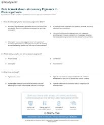the absorption of light by photosynthetic pigments worksheet answers quiz worksheet accessory pigments in photosynthesis study com