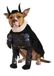 Dog Halloween Costume Ideas 102 Costume Ideas Images Costume Ideas