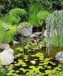 Backyard Garden Ponds 73 Backyard And Garden Pond Designs And Ideas