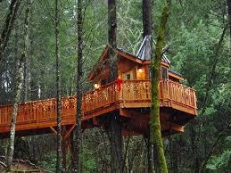 cool tree house best tree house plans homescorner com