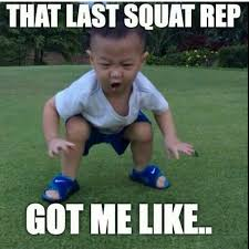 Squat Meme - santa barbara strength on monday s we squat