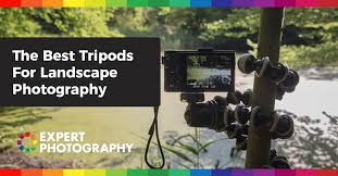 Best Cameras For Landscape Photography by Choosing The Best Tripods For Landscape Photography